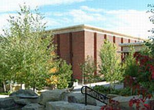 MSU Library