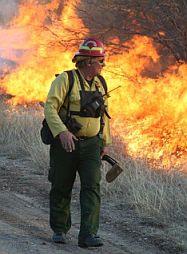 Wildfire Academy